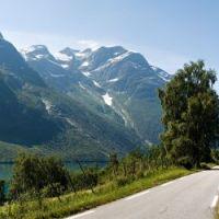 Norwegia: Wybuch nienawiści do Norwegów